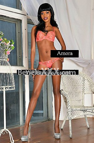 Amora escort girl à Anvers