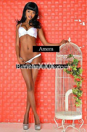Amora escort girl � Anvers
