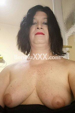 Transgenre hermaphrodite Bruxelles